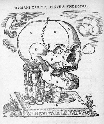 1537 ヨハン・ドリュアンデル